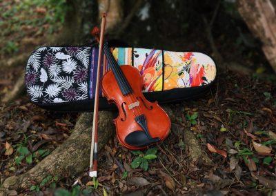 🎻 Capa para Violino 🎻